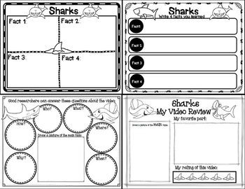 Let's Learn about it with QR Codes! Sharks