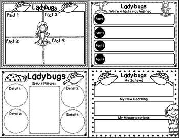 Let's Lesrn About It With QR Codes: Ladybugs