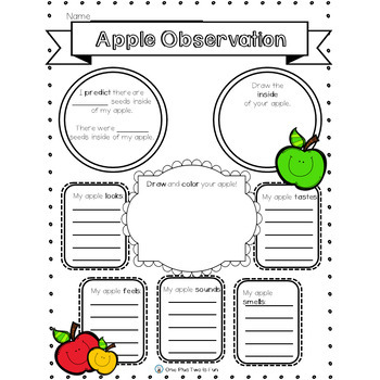 Apple Observation Activity Printable
