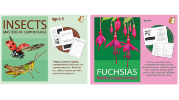 Let's Practise Our Reading Comprehension: Pack 3 (6-9 years)