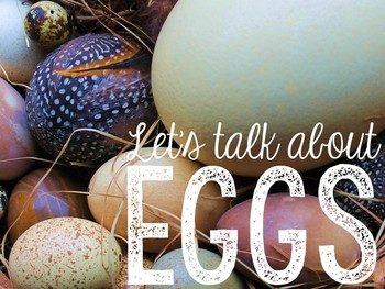 Let's Talk About Oviparous Animals: Interactive Read-Aloud PowerPoint