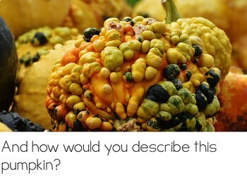 Let's Talk About Pumpkins: Interactive Read-Aloud PowerPoint