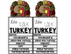 Let's Talk Turkey! An Informational Text and Response Flipbook