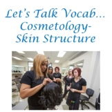 Let's Talk Vocab...Cosmetology- Skin Structure