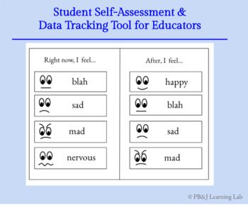 Let's Try... Student Self-Assessment