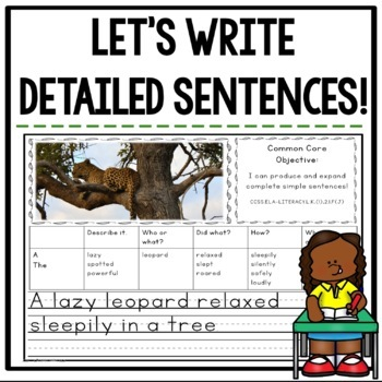 Let's Write Detailed Sentences! {Common Core Aligned}