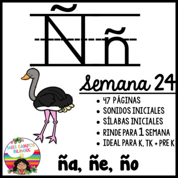 Letra ñ Worksheets Teaching Resources Teachers Pay Teachers