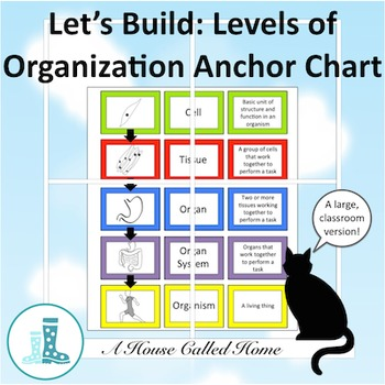 Let's Build: Levels of Orga... by A House Called Home | Teachers ...
