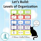 Let's Build: Levels of Organization