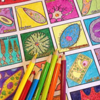 """Cell Diversity and Organelles: """"Let's Cell-ebrate!"""" Coloring Page Collection Two"""