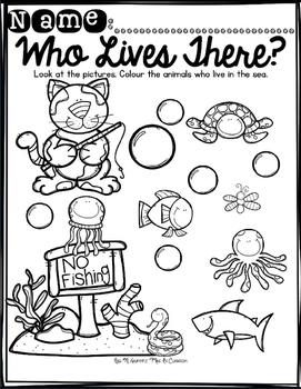 Classifying: What Belongs?