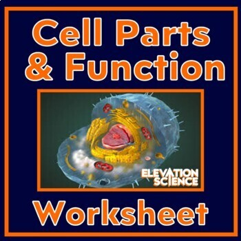 Let's Draw:  Cell Parts and Their Function