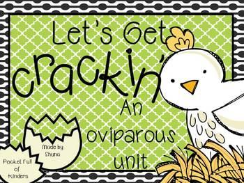 Let's Get Crackin' {An Oviparous Unit}
