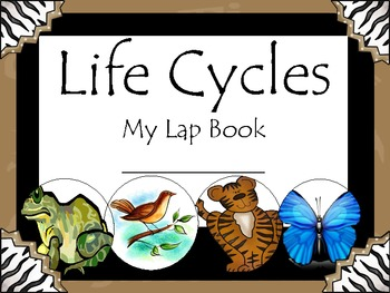 Let's Investigate Life Cycles!