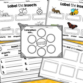 Let's Label, Write, and Draw About...Insects