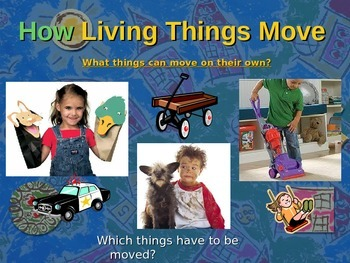 Let's Learn About Movement/Motion! (Powerpoint)