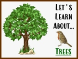 Let's Learn About Trees! (Powerpoint)