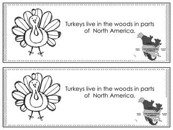 Let's Learn About Turkeys!