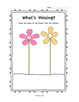 Let's Make A Flower!