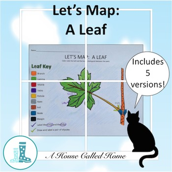Let's Map: A Leaf