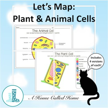 Let's Map: Plant and Animal Cells