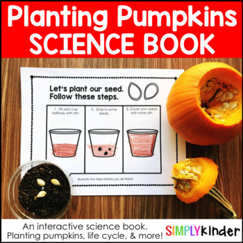 Pumpkin Life Cycle - Planting Pumpkins