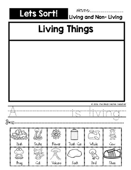 Lets Sort! Living/Non Living Things
