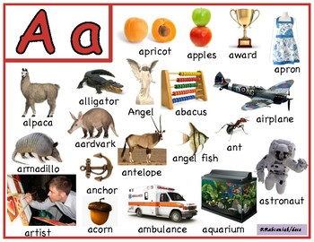 Letter A word cards.  Reggio inspired.  Full colour.
