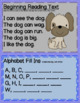Letter And Sound Recognition Game or Assessment~Sample