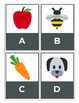 Early Literacy: Alphabet Cards with 21 activities