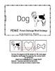 Letter D - BASIC Alphabet Curriculum for Preschool and Kindergarten - Core
