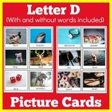 Letter D | Preschool Pre K Kindergarten | Picture Cards |  Activity