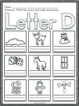 Letter D Vocabulary Cards