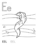 Letter E Eel