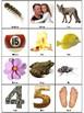 Letter F Bingo Game (8 Squares per Board) Vocabulary Building