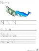 Letter N  Alliteration Set