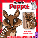Letter N Craft Activity   Paper Bag Puppet Numbat