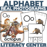Letter O Phonics and Writing Center Packet