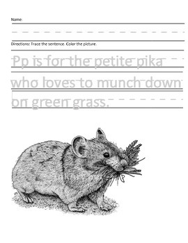 Letter P for Pika Handwriting Practice and Questions!