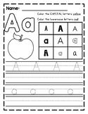 Letter Review Worksheet