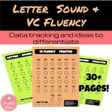 Letter Sound Fluency and VC Fluency Practice