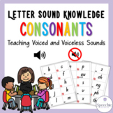 Letter Sound Knowledge - Consonants - Teaching voiced and