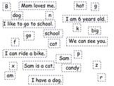 Letter Word Sentence Worksheet