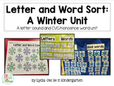 Sensory Bin Center Activities - Real and Nonsense Words Winter