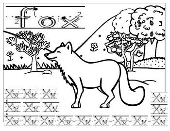 Letter X fox