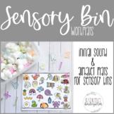Letter and Beginning Sound Sensory Bin Mats