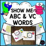 Letter Searches and VC Word-Searches Phonics Activity