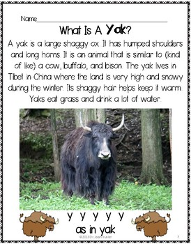 Letter of the Week:  Letter Y Workbook (PreK & Kindergarten)