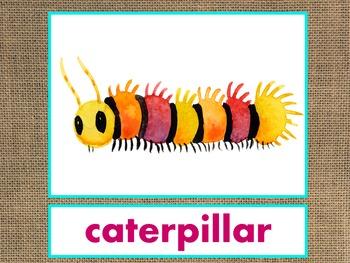 Letters A-M Alphabet PowerPoint BUNDLE Fun/Colorful Words/Pictures (Expandable)
