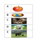 Letters and Objects that can be used for Flash Cards